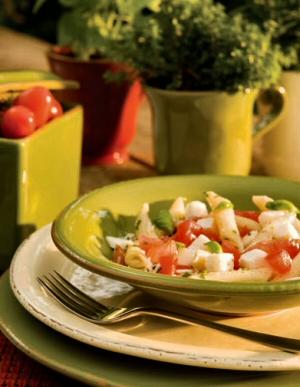 Designer Dinnerware Casual Italian Dinnerware Italian